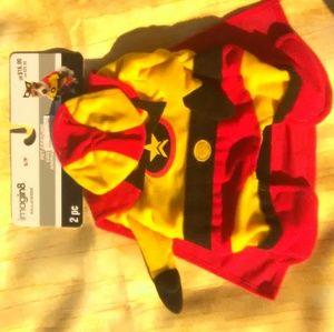 Super Hero Puppy Costume